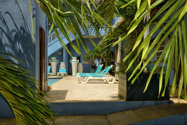 Parrot Cove around pool.jpg