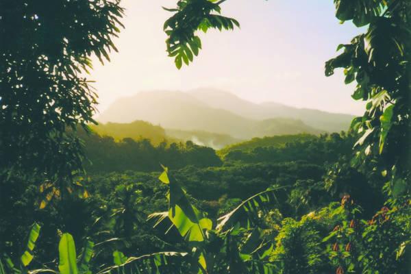 Combineer de Caribische eilanden Dominica en Guadeloupe in een vakantie. Je krijgt de meest veelzijdige reis. De mooiste natuur