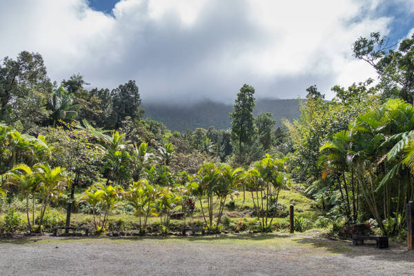 Complete Wellness & Adventure rondreis Dominica