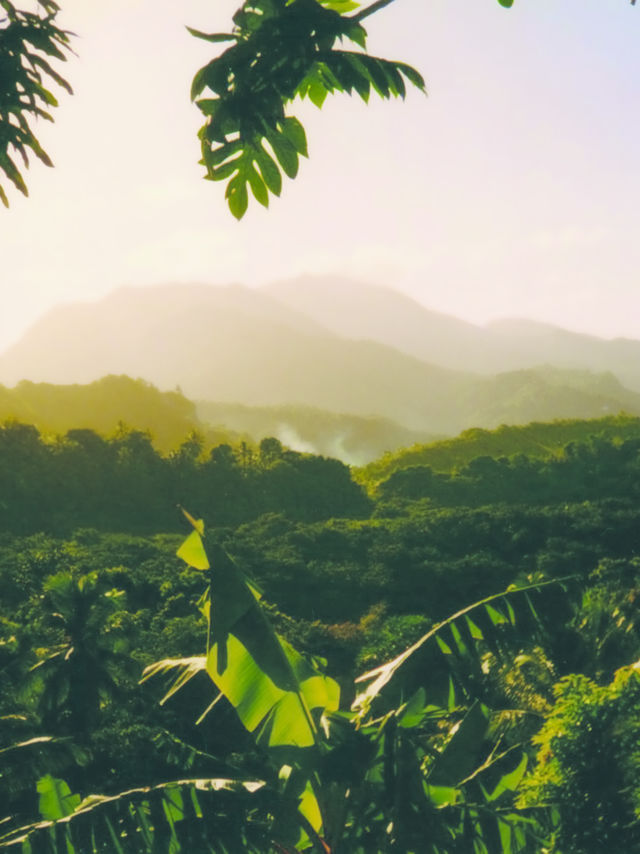 Combinatiereis Guadeloupe Dominica