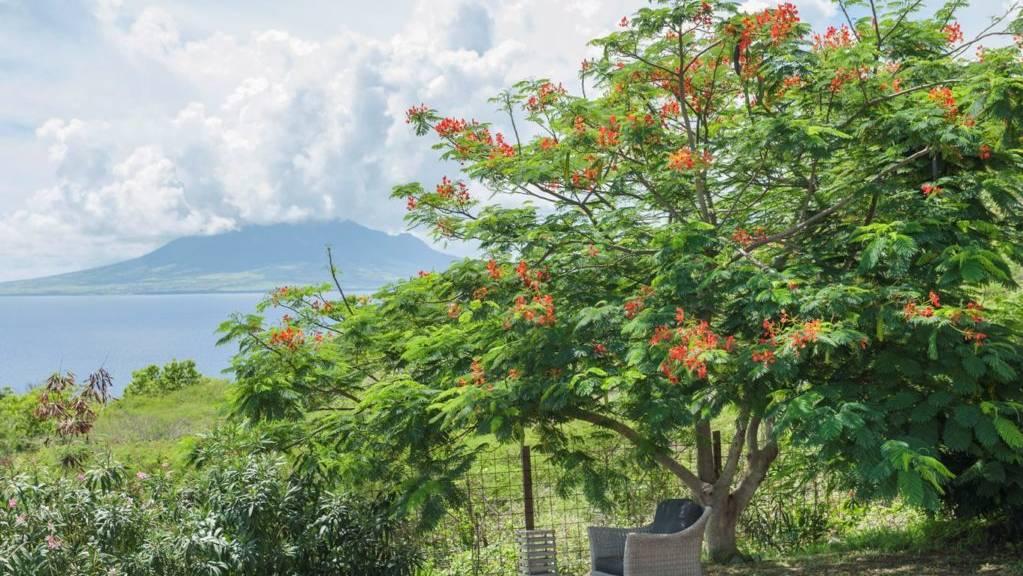 4villa-fragipani-steustatius-.jpeg