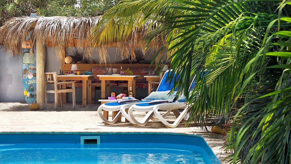 Oasis_tropical_garden8.jpg