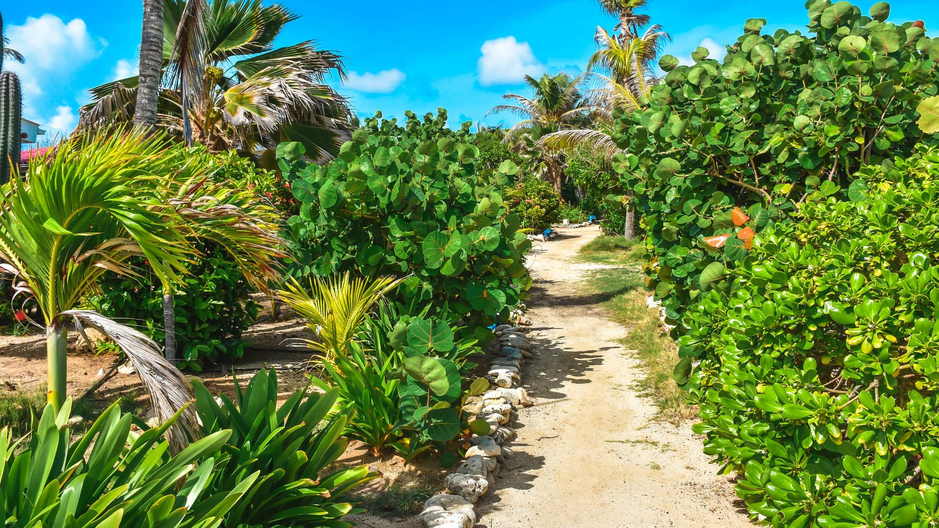 Sorobon Beach Resort 4.jpg
