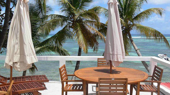 cocos-guadeloup-16.jpg