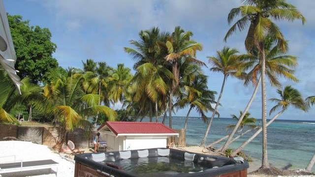 cocos-guadeloup-3.jpg