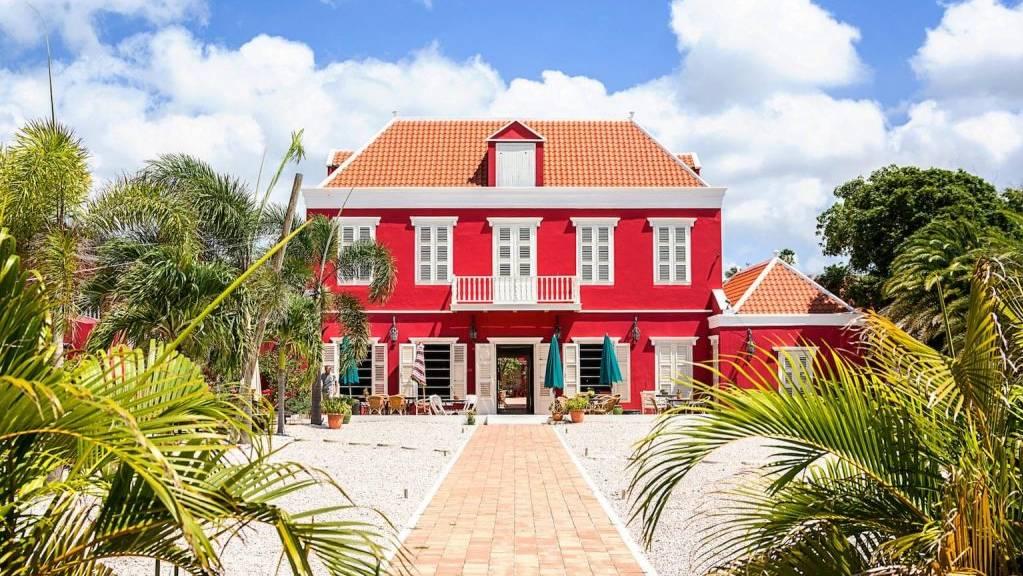 villa-tokara-outside-palm-1024x683.jpg