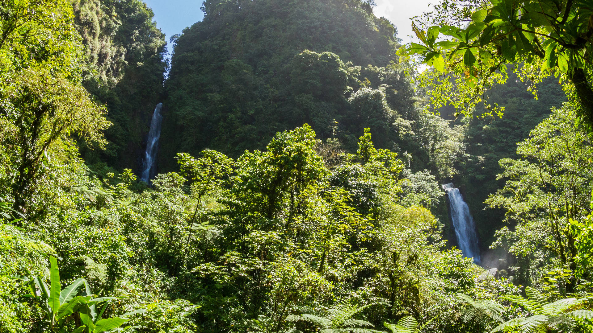waterval-tragarfalls-dominica.jpg