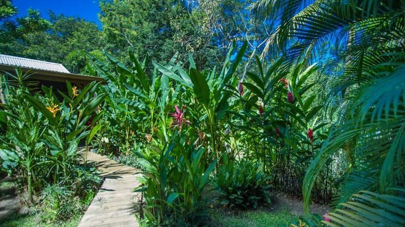 Au Jardin des Colibris